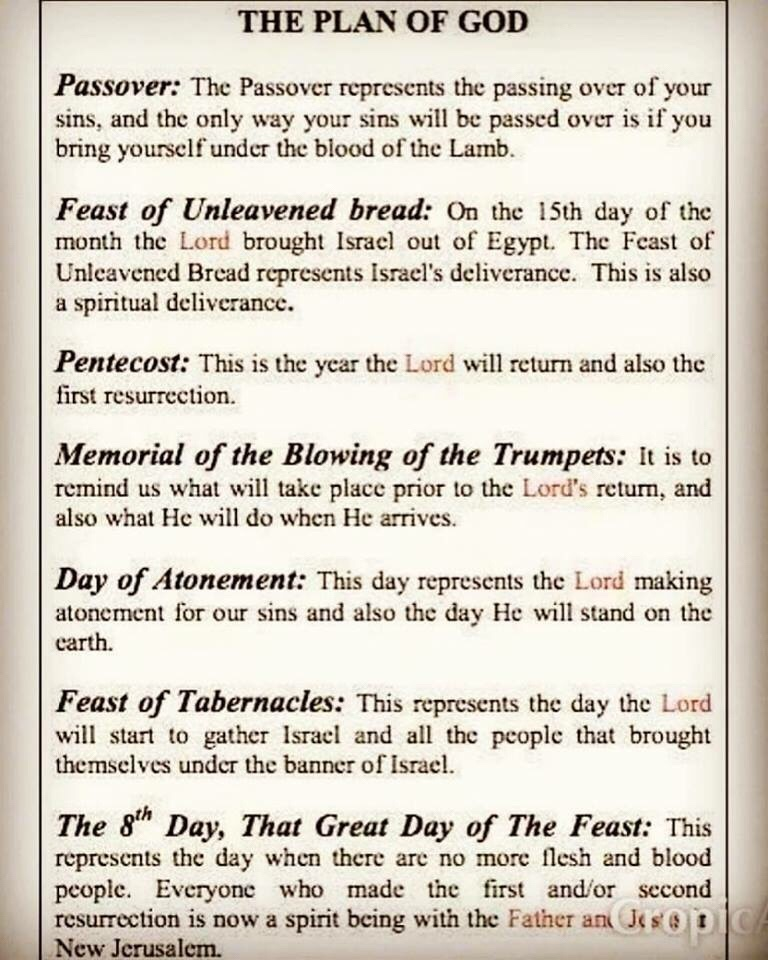 God's Holy Feast Days - Lines & Precepts
